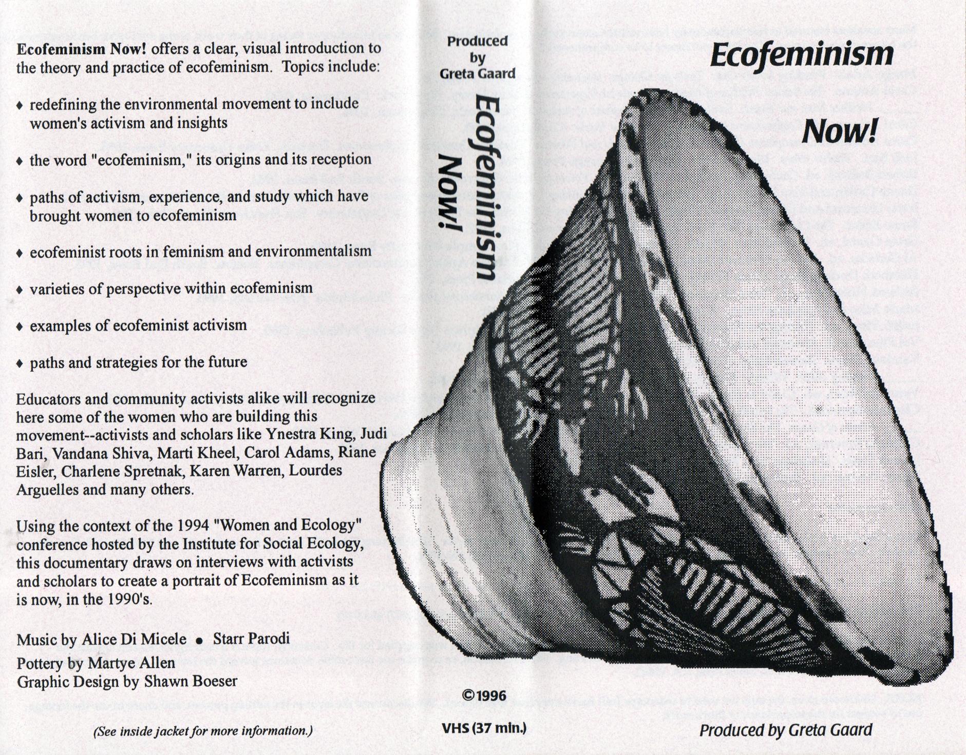 the idea of ecofeminism in america according to karen warren